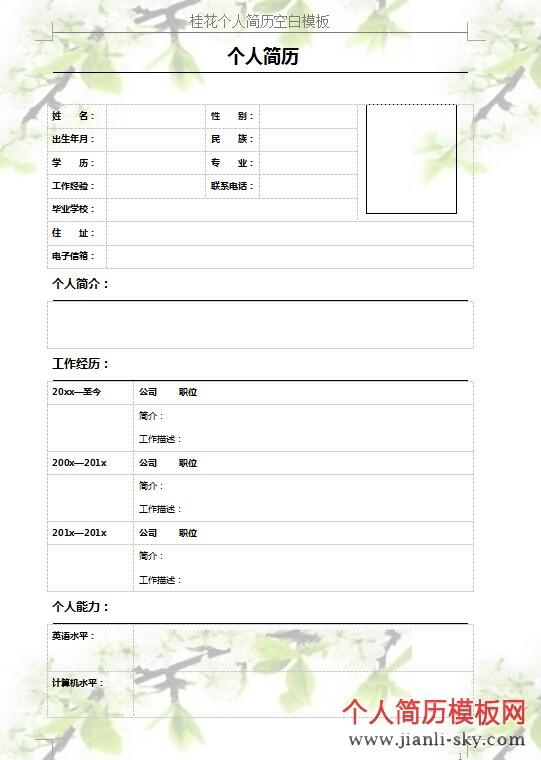 桂花个人简历空白模板图片